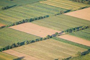 Επιτροπή θεμάτων γης & επίλυσης διαφορών Αναδασμός