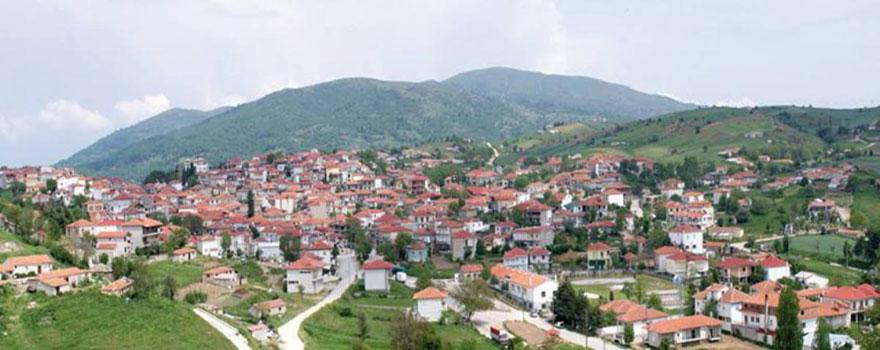 Λιβαδερό Σερβίων