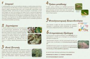 Ενημέρωση για τον Οργανισμό καραντίνας Xyllela fastidiosa - Φυλλάδιο
