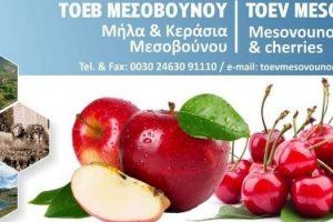 ΤΟΕΒ Μεσοβούνου