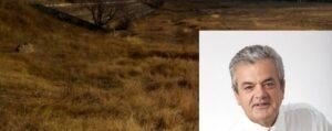 Τσιούμαρης Γρηγόρης: Αναμόρφωση του γηπέδου Αγίου Δημητρίου