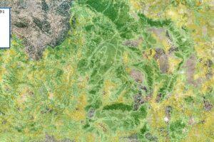 Δασικός Χάρτης της Π.Ε. Κοζάνης